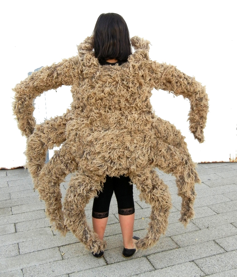 Decorator Crab Costume