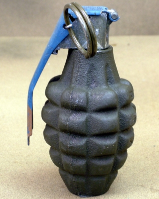 Weapon: pineapple_grenade
