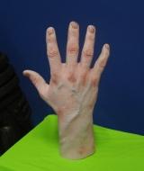 Dexter Severed Hand