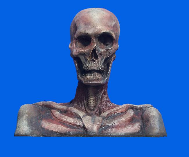 Skeleton Head and Shoulders