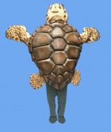 Sea Turtle costume