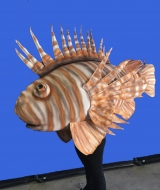 Lion Fish Costume