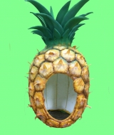 pineapple-head