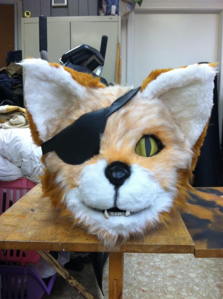pirate-cat-head