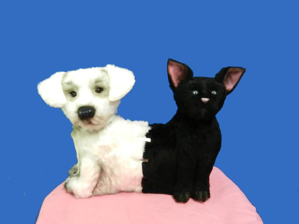 Dog Cat Puppet 1