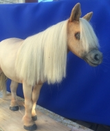 Horse Puppet Front