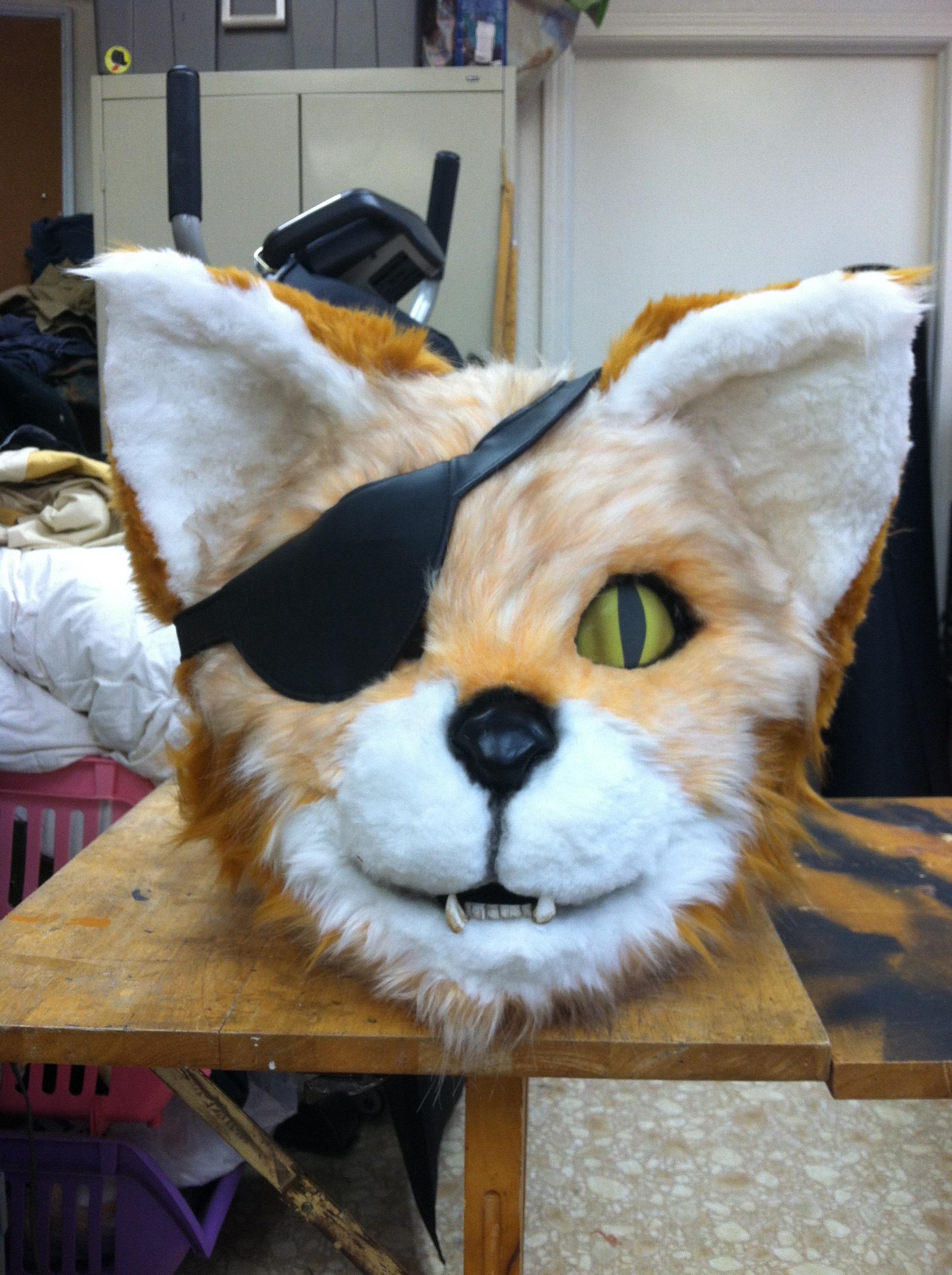 Pirate Cat head
