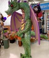 Dragon Costume Superstor TV Series
