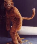 Aero Smith Sunshine Music Video Chesshire Cat