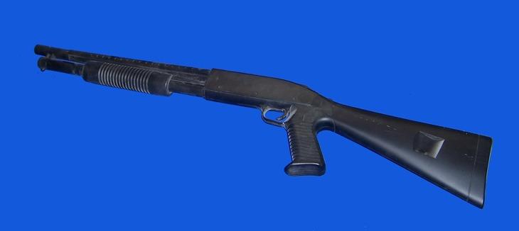 Gun: tacshotgun